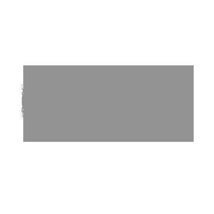 G10 Inverter logo